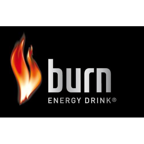 Burn  Enerji İçeceği 250 ML (12 Li)